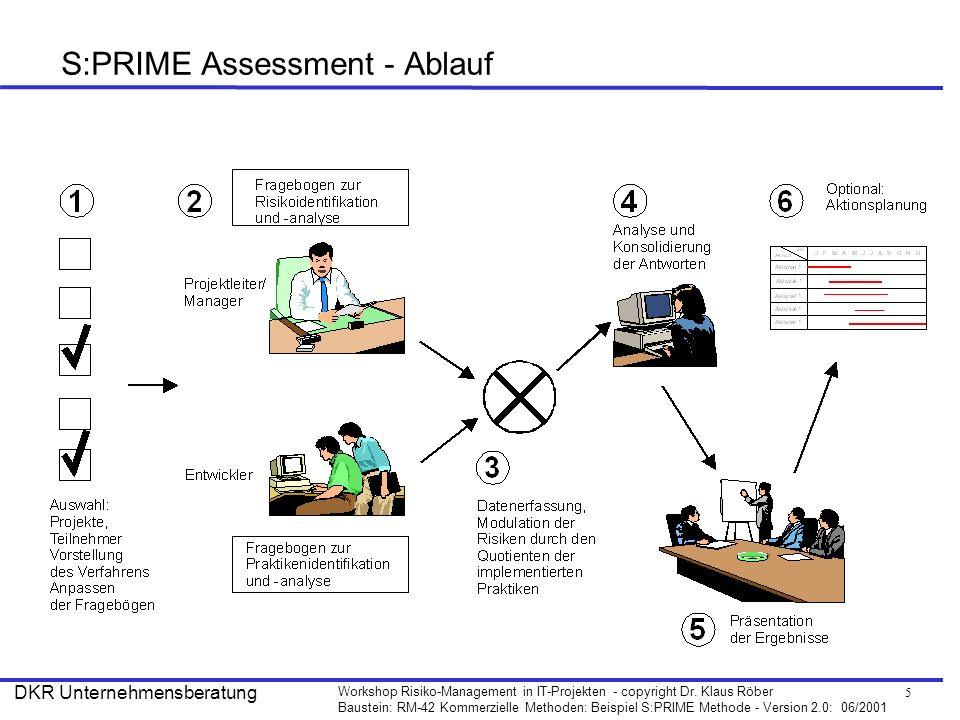 S:PRIME Assessment - Ablauf