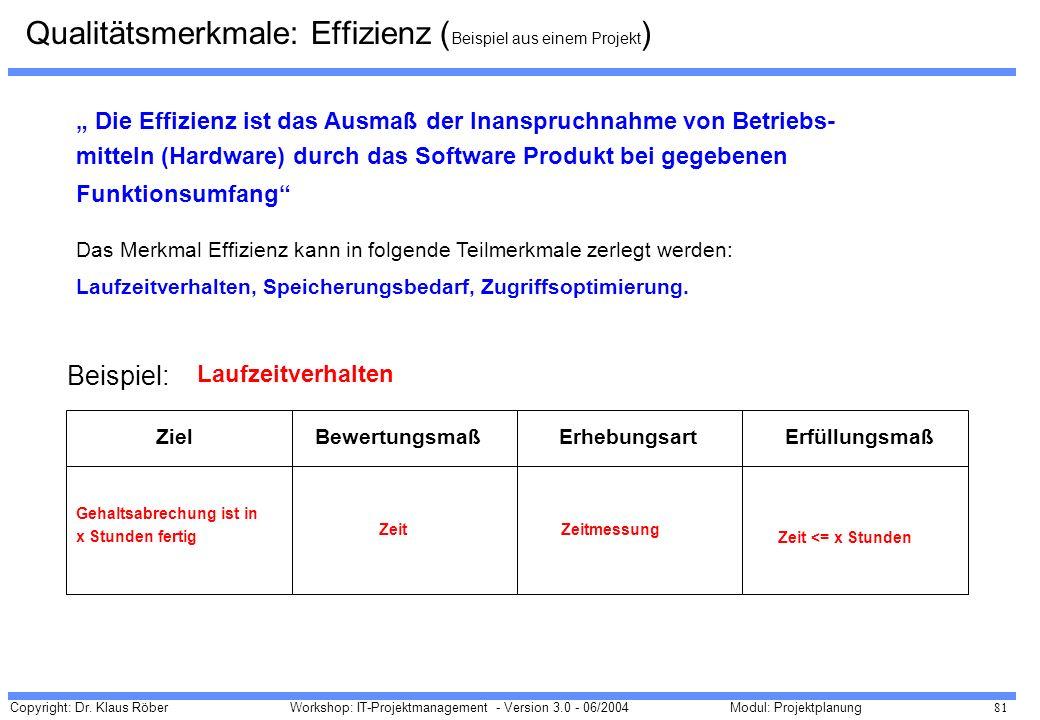 Qualitätsmerkmale: Effizienz (Beispiel aus einem Projekt)