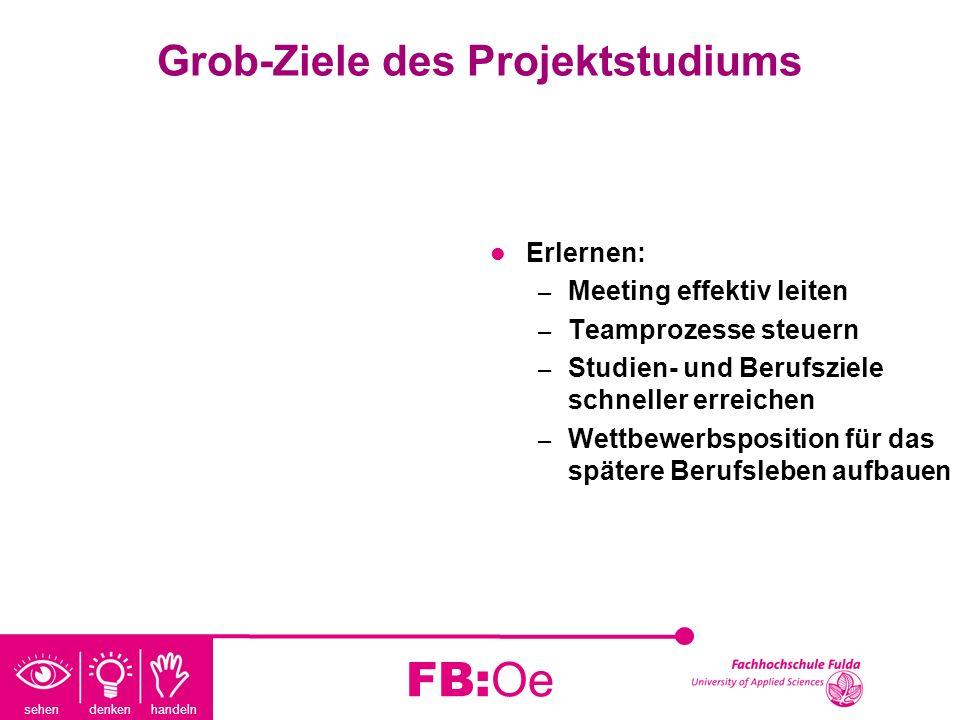 Grob-Ziele des Projektstudiums