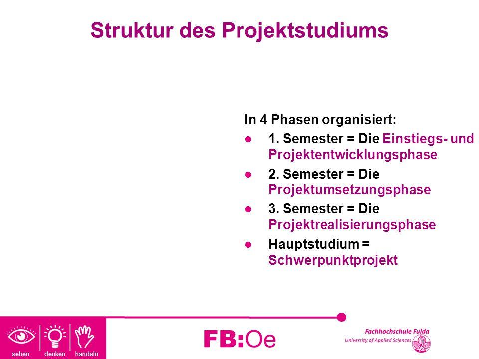 Struktur des Projektstudiums