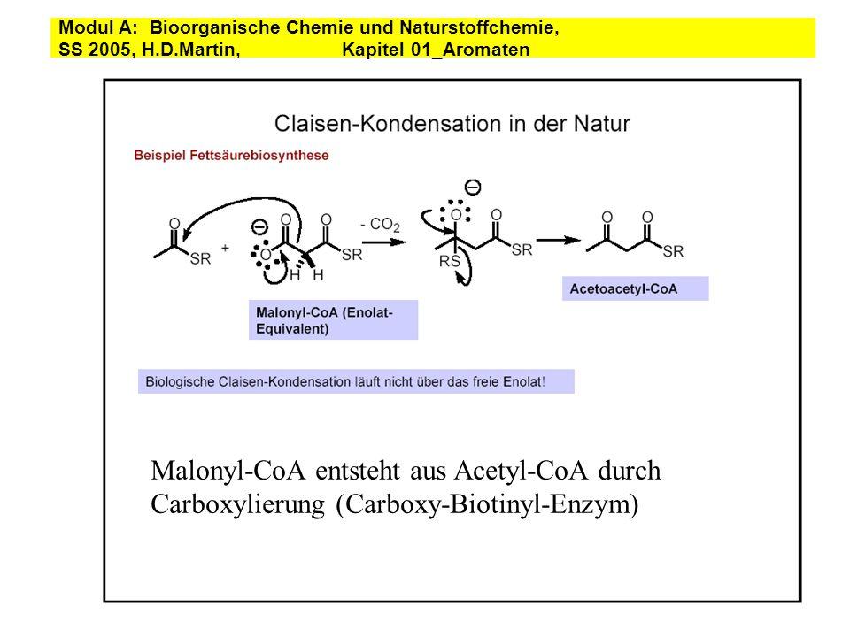 Malonyl-CoA entsteht aus Acetyl-CoA durch