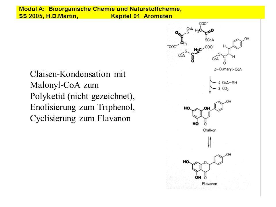 Claisen-Kondensation mit Malonyl-CoA zum Polyketid (nicht gezeichnet),