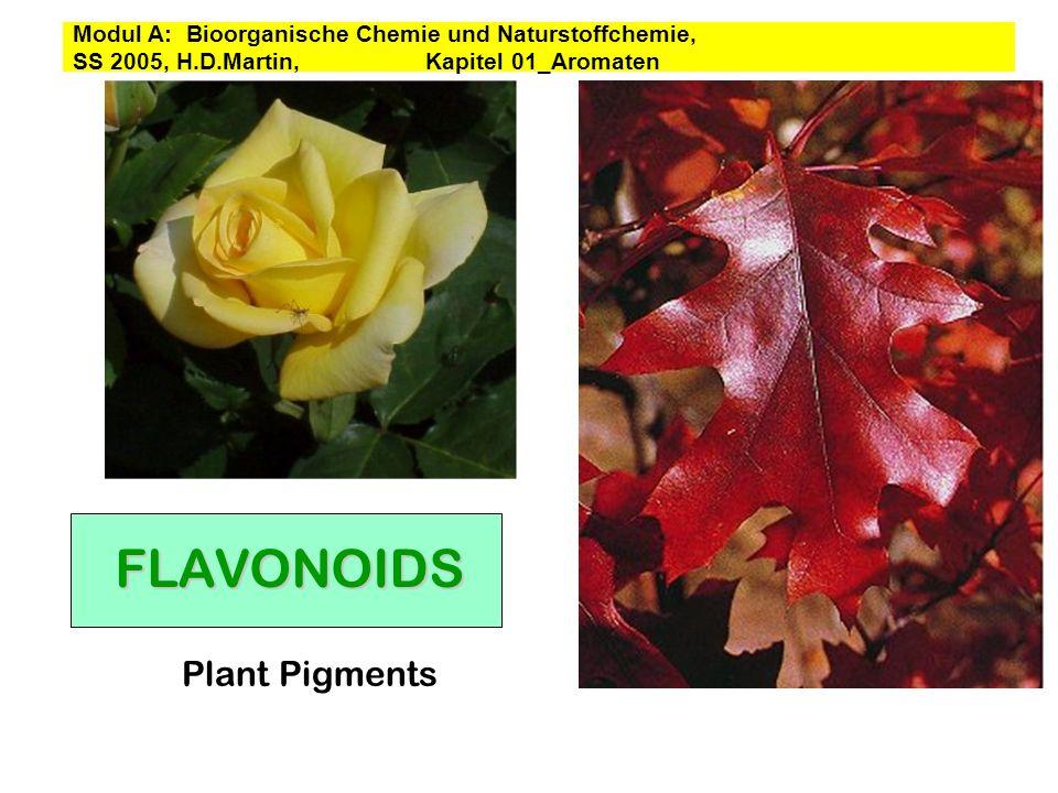 FLAVONOIDS Plant Pigments