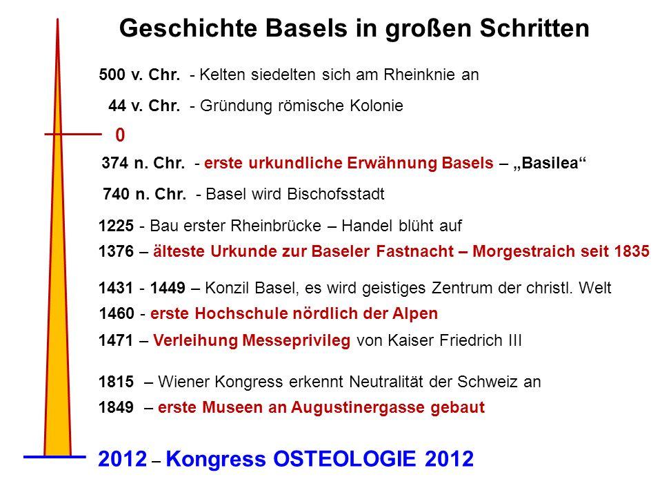 Geschichte Basels in großen Schritten