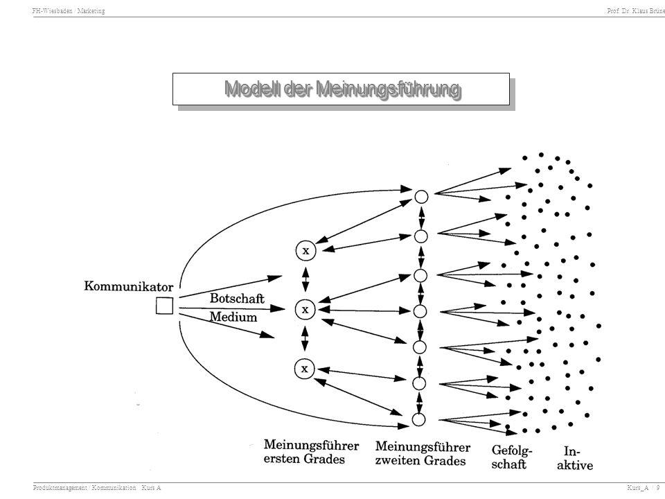 Modell der Meinungsführung