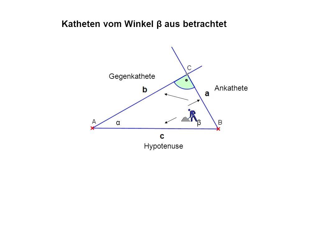 Katheten vom Winkel β aus betrachtet