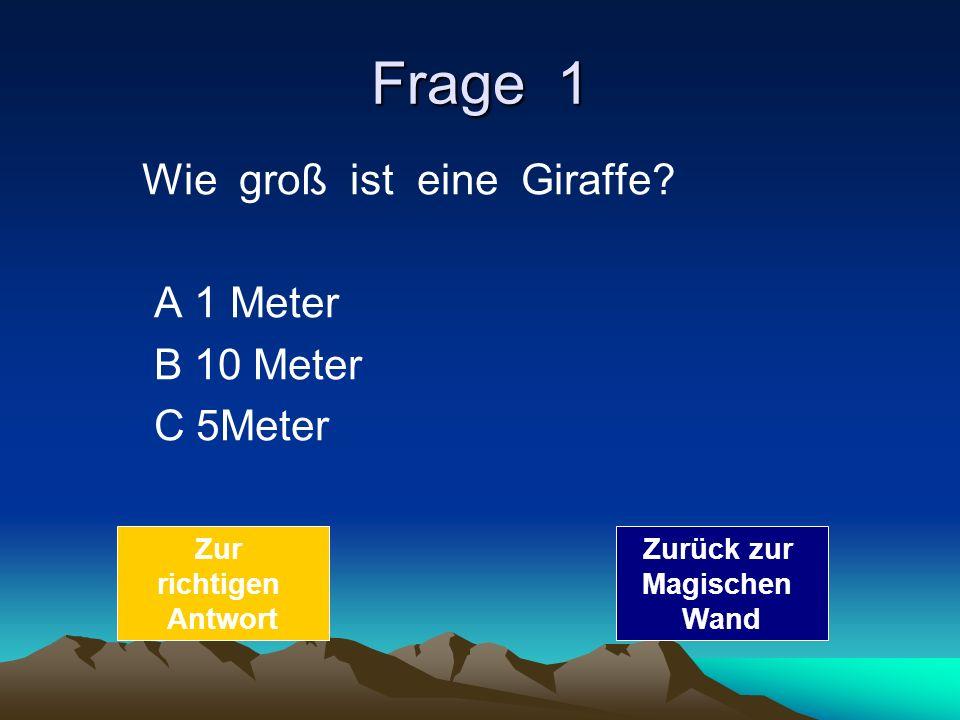 Frage 1 Wie groß ist eine Giraffe A 1 Meter B 10 Meter C 5Meter Zur