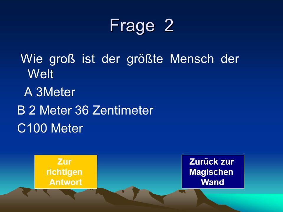 Frage 2 Wie groß ist der größte Mensch der Welt A 3Meter