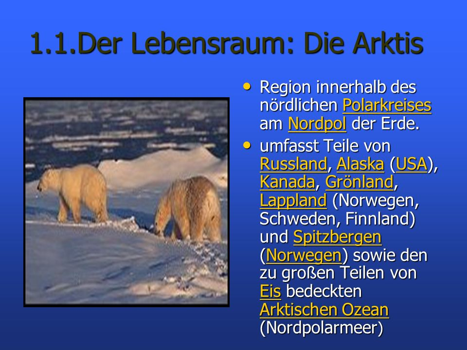 1.1.Der Lebensraum: Die Arktis