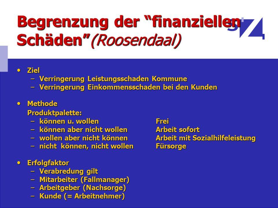 Begrenzung der finanziellen Schäden (Roosendaal)