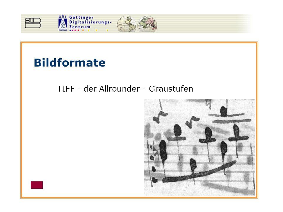 Bildformate TIFF - der Allrounder - Graustufen
