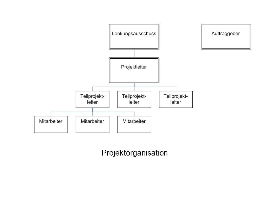 Projektorganisation