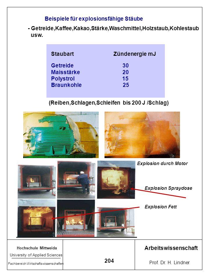 Beispiele für explosionsfähige Stäube