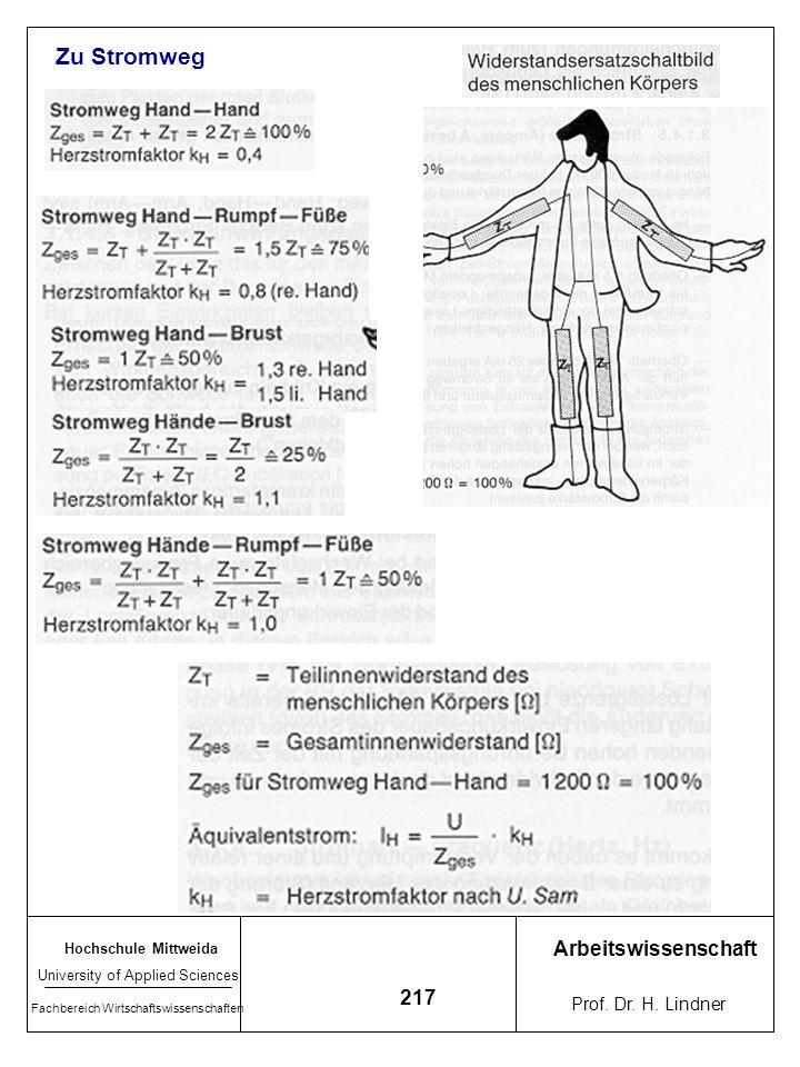 Zu Stromweg Arbeitswissenschaft 217 Prof. Dr. H. Lindner