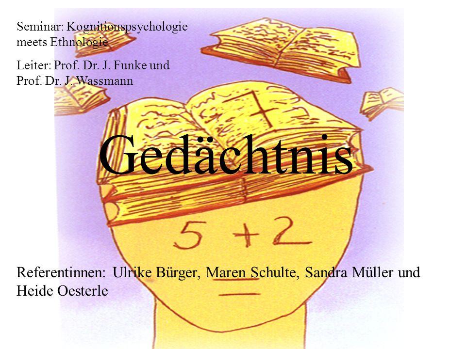 Seminar: Kognitionspsychologie meets Ethnologie