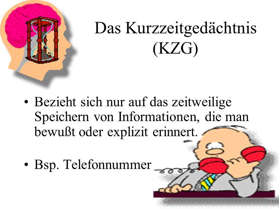 Das Kurzzeitgedächtnis (KZG)