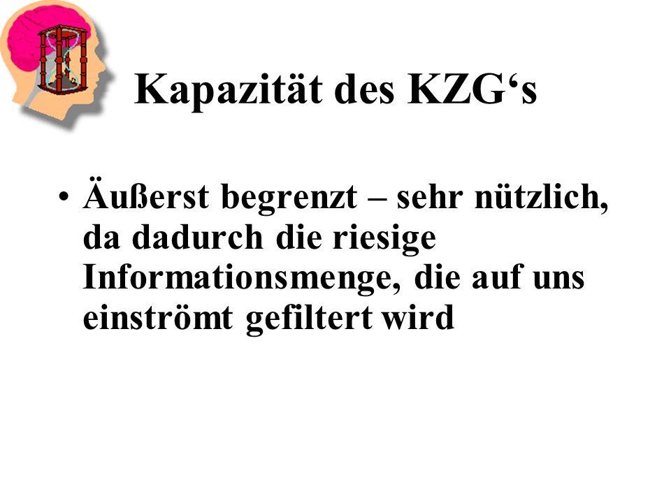 Kapazität des KZG's Äußerst begrenzt – sehr nützlich, da dadurch die riesige Informationsmenge, die auf uns einströmt gefiltert wird.
