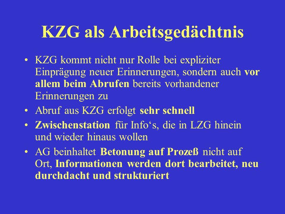 KZG als Arbeitsgedächtnis