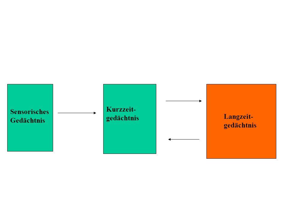 Kurzzeit-gedächtnis Sensorisches Gedächtnis Langzeit-gedächtnis