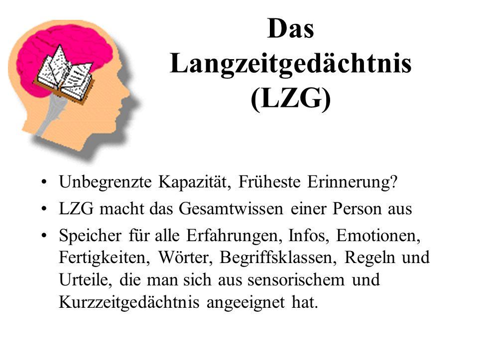Das Langzeitgedächtnis (LZG)