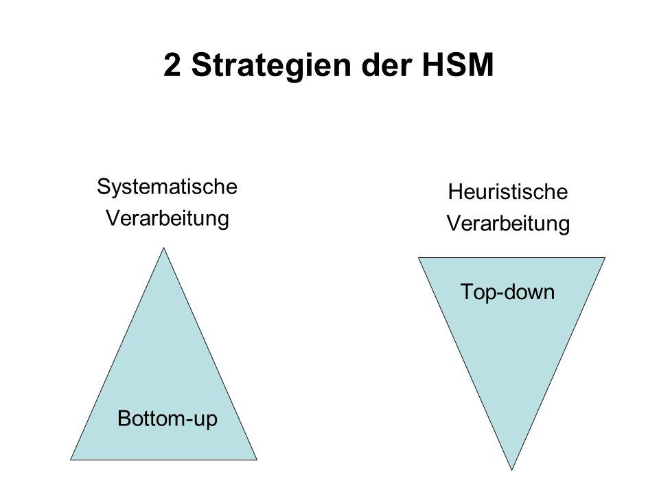 2 Strategien der HSM Systematische Heuristische Verarbeitung