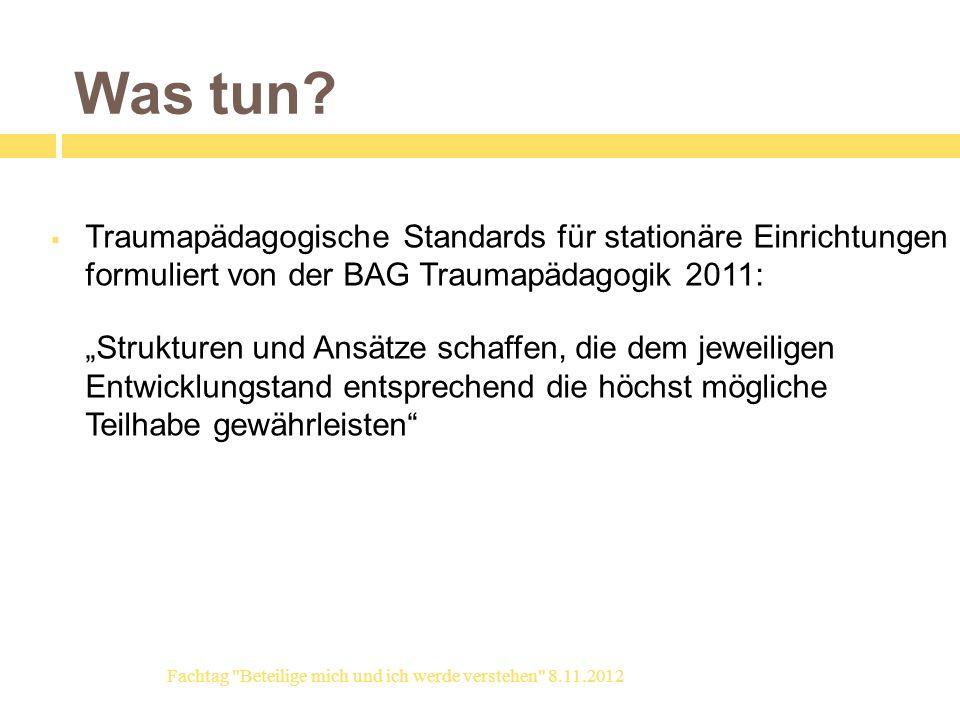 Was tun Traumapädagogische Standards für stationäre Einrichtungen formuliert von der BAG Traumapädagogik 2011: