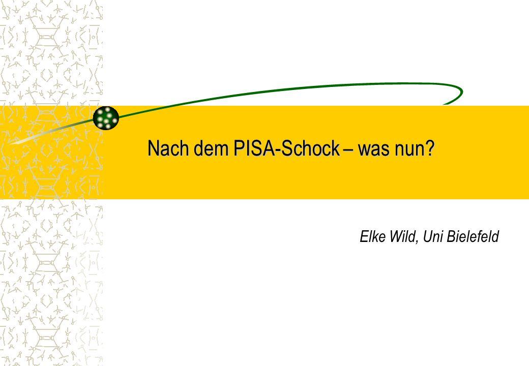 Nach dem PISA-Schock – was nun