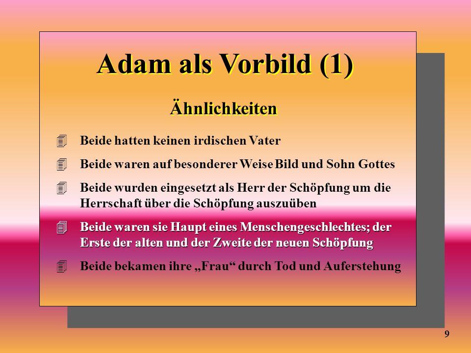 Adam als Vorbild (1) Ähnlichkeiten Beide hatten keinen irdischen Vater