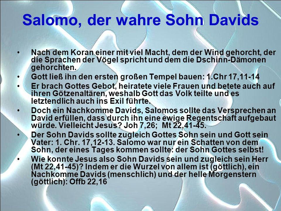 Salomo, der wahre Sohn Davids