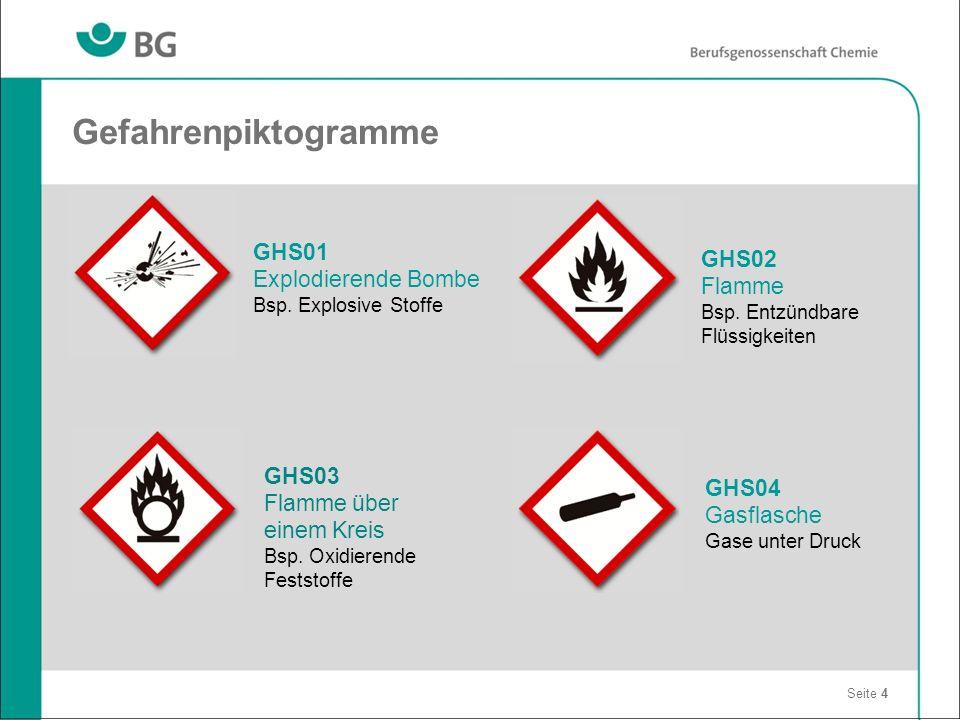 Gefahrenpiktogramme GHS01 GHS02 Explodierende Bombe Flamme GHS03