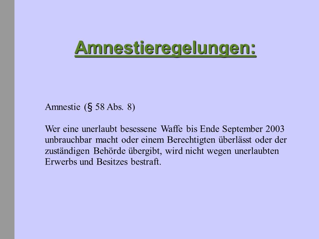 Amnestieregelungen: Amnestie (§ 58 Abs. 8)