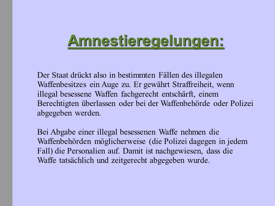 Amnestieregelungen: