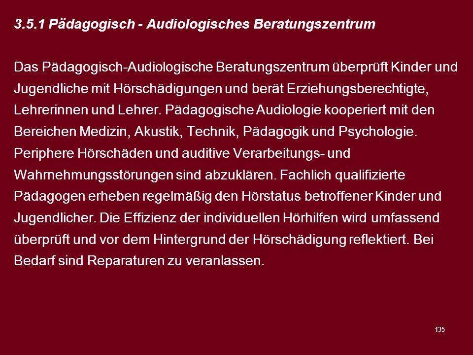 3.5.1 Pädagogisch - Audiologisches Beratungszentrum