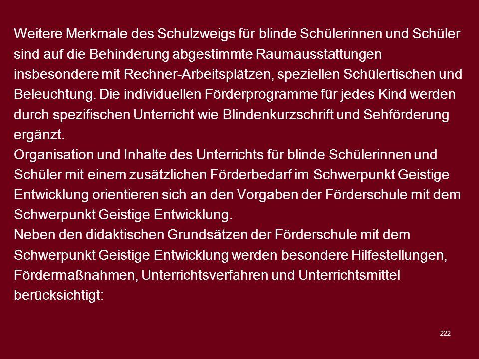 Weitere Merkmale des Schulzweigs für blinde Schülerinnen und Schüler sind auf die Behinderung abgestimmte Raumausstattungen insbesondere mit Rechner-Arbeitsplätzen, speziellen Schülertischen und Beleuchtung. Die individuellen Förderprogramme für jedes Kind werden durch spezifischen Unterricht wie Blindenkurzschrift und Sehförderung ergänzt.