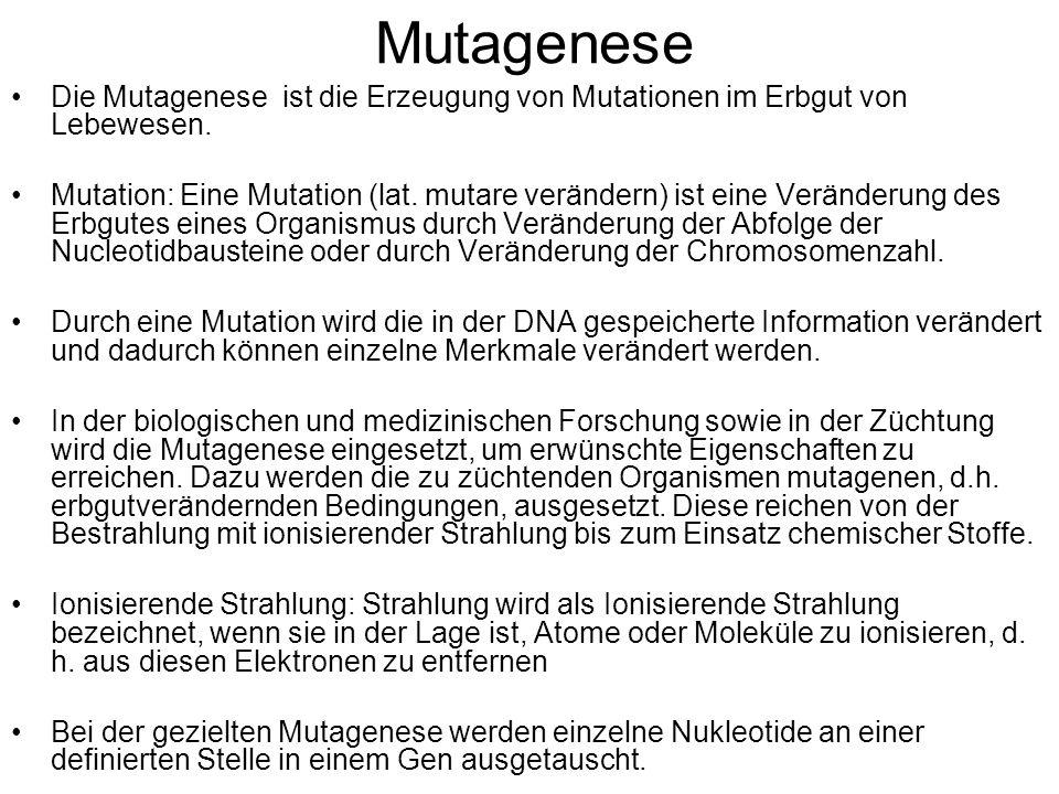 MutageneseDie Mutagenese ist die Erzeugung von Mutationen im Erbgut von Lebewesen.