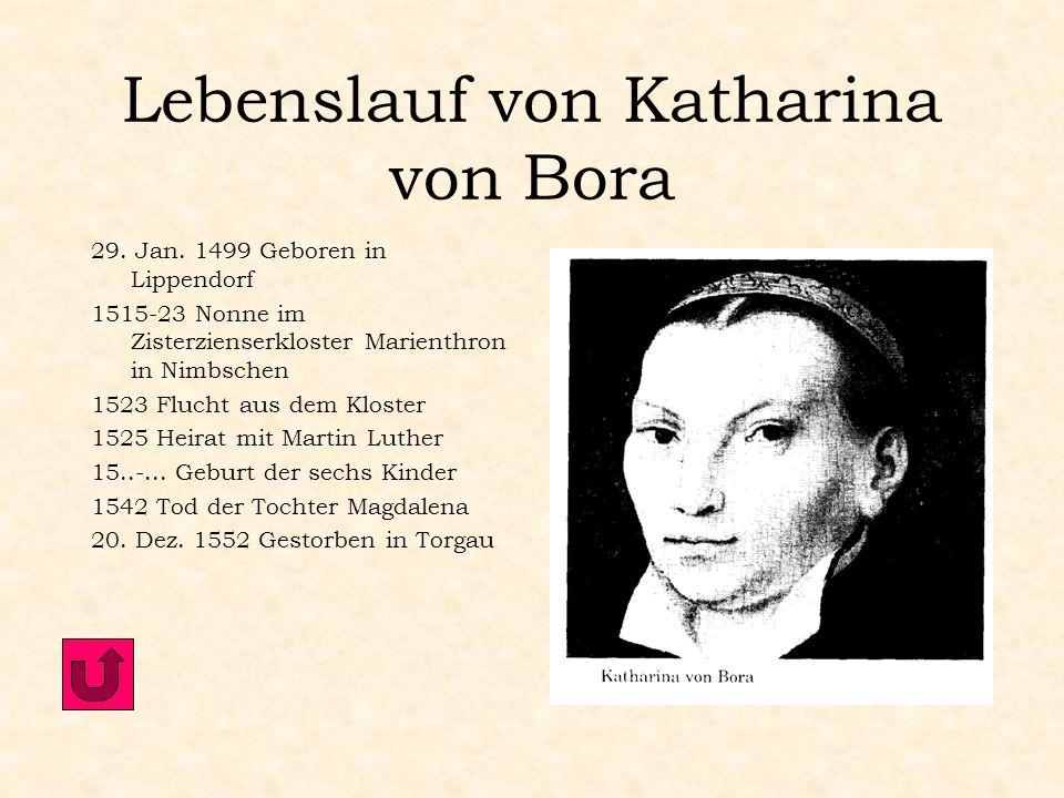Lebenslauf von Katharina von Bora