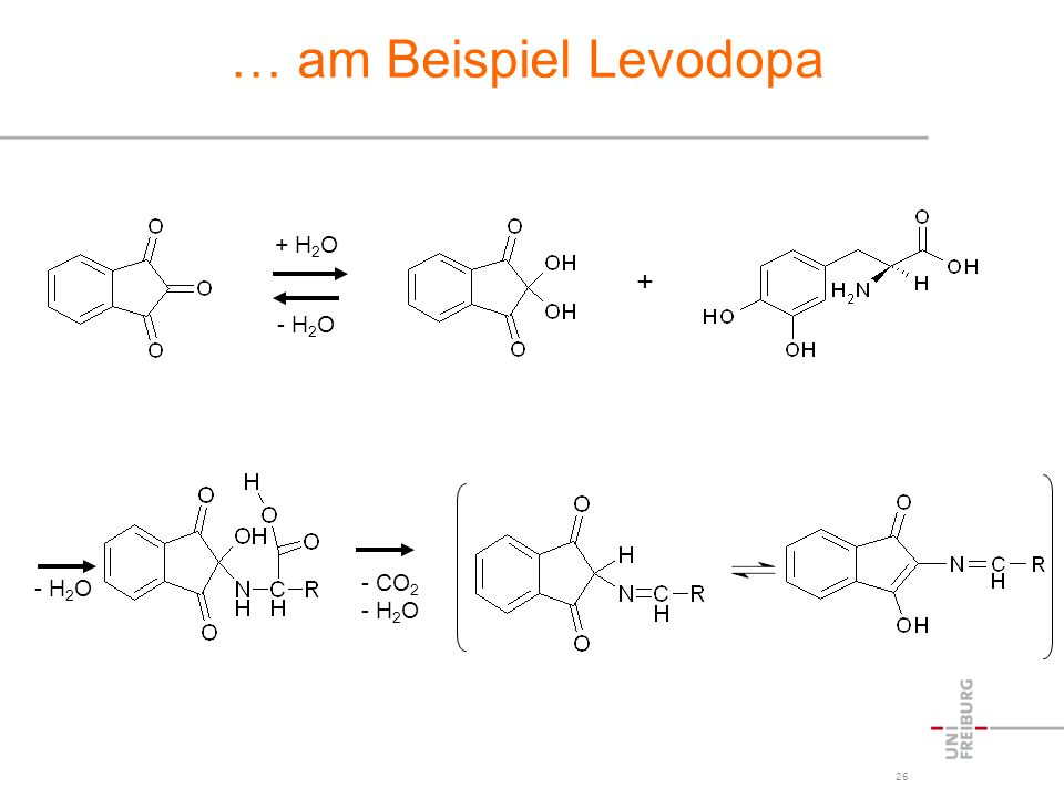 … am Beispiel Levodopa + H2O + - H2O - H2O CO2 - H2O