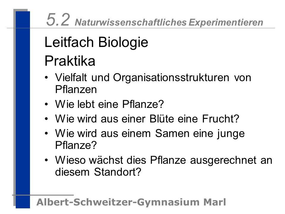 5.2 Naturwissenschaftliches Experimentieren