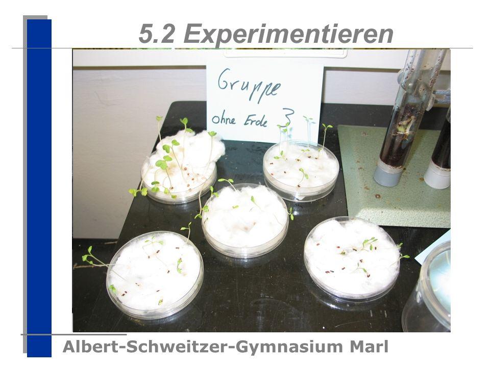 5.2 Experimentieren