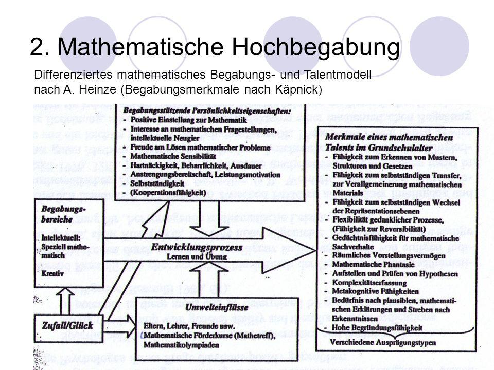 2. Mathematische Hochbegabung