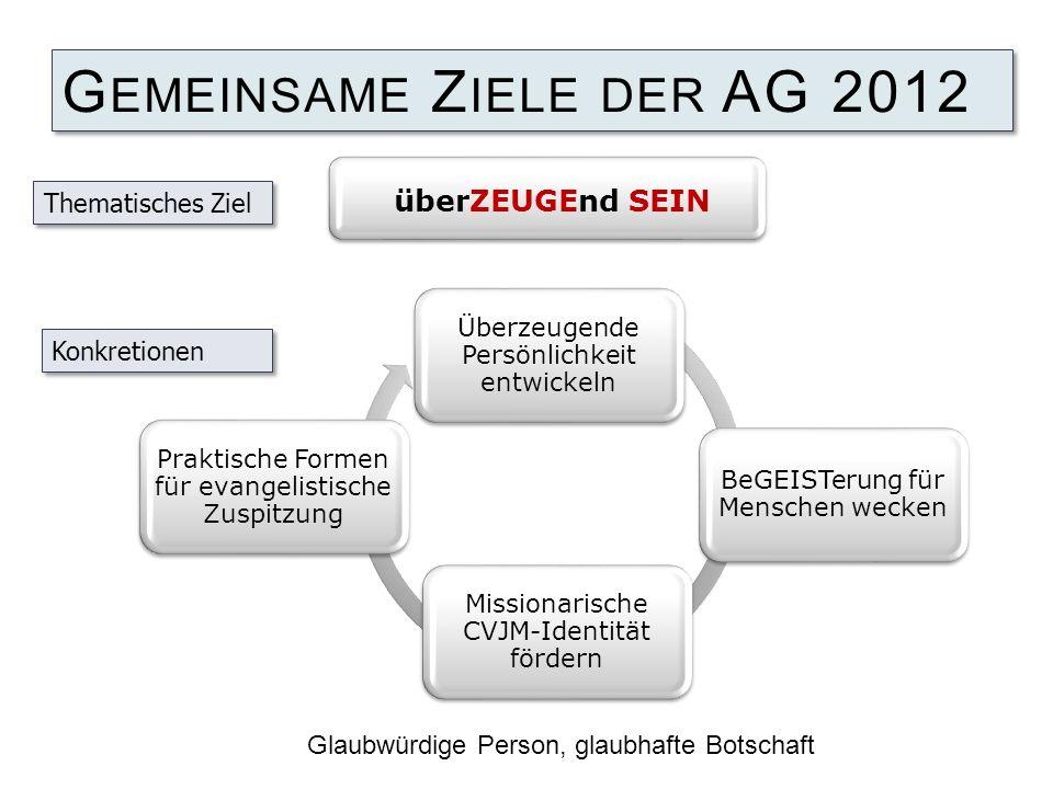 Gemeinsame Ziele der AG 2012