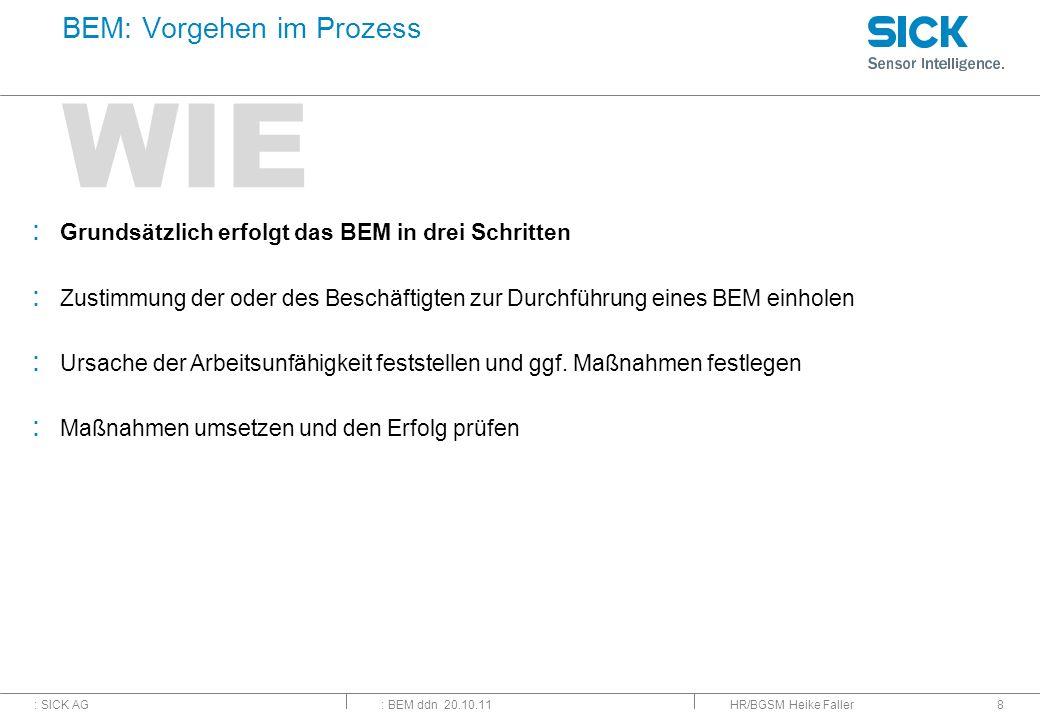 BEM: Vorgehen im Prozess