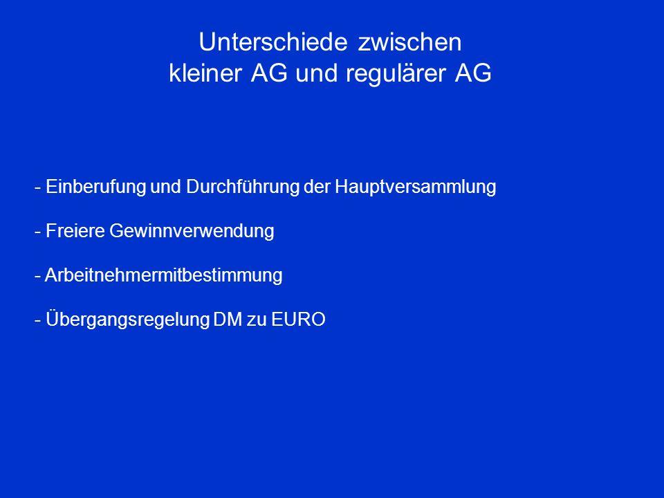 Unterschiede zwischen kleiner AG und regulärer AG