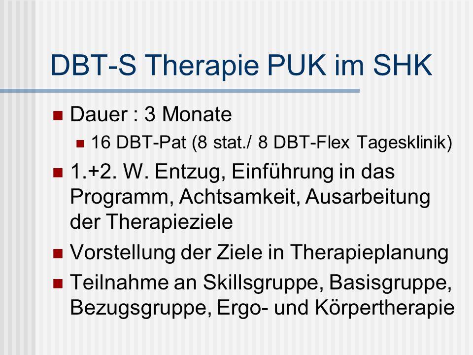 DBT-S Therapie PUK im SHK