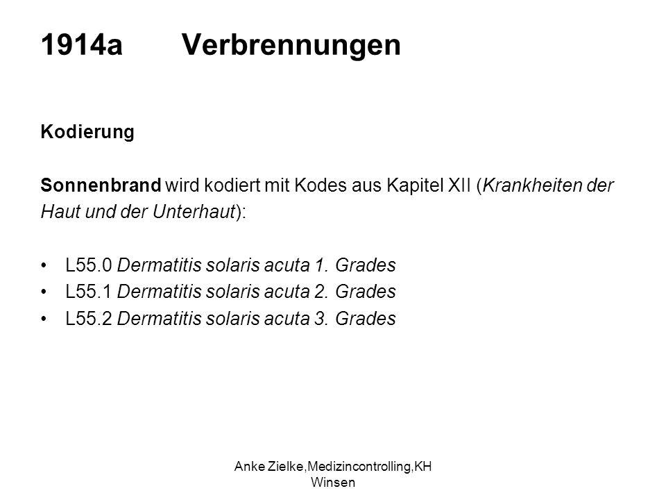 Anke Zielke,Medizincontrolling,KH Winsen
