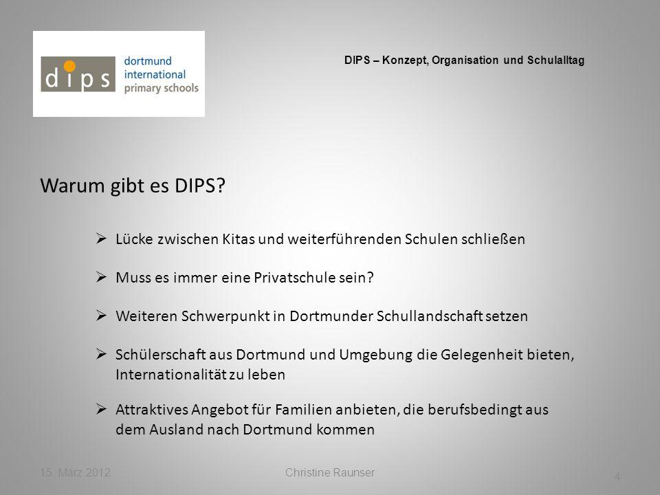 DIPS – Konzept, Organisation und Schulalltag