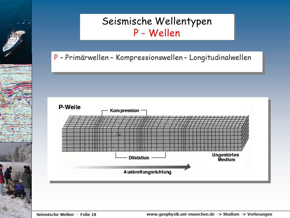 Seismische Wellentypen P - Wellen