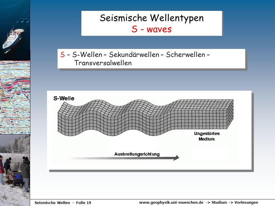 Seismische Wellentypen S - waves