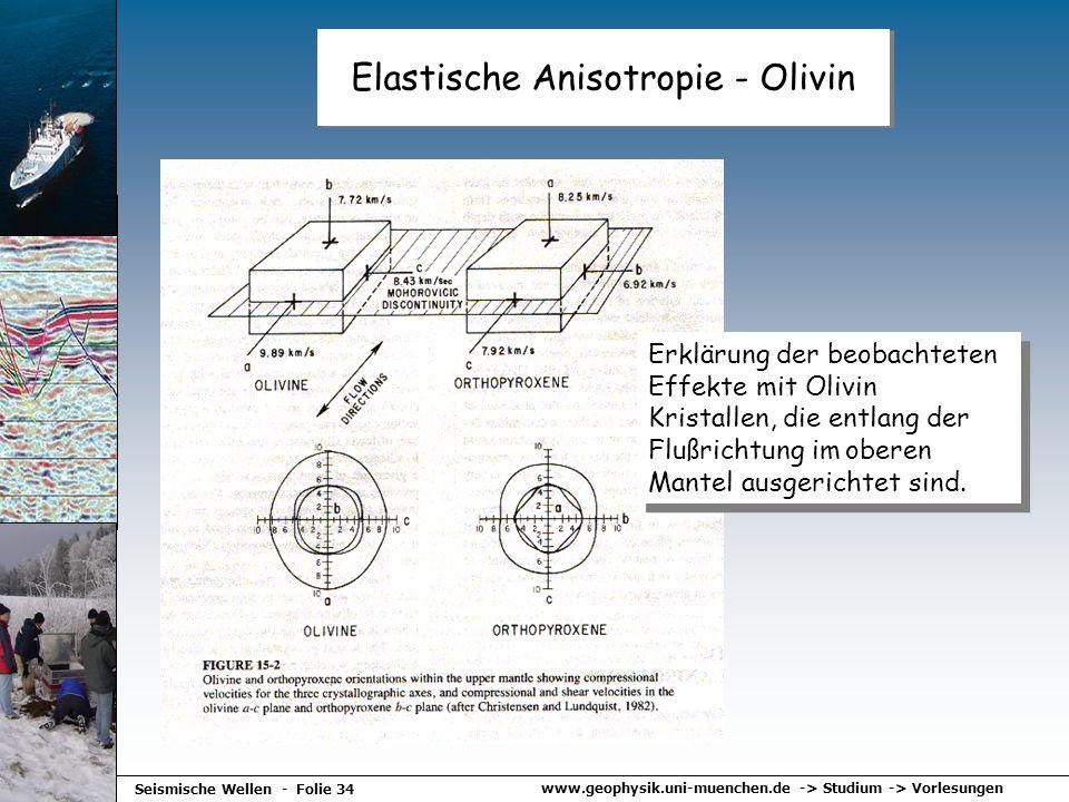 Elastische Anisotropie - Olivin
