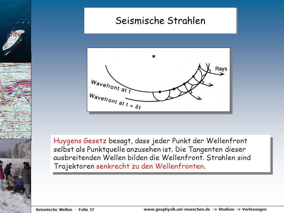 Seismische Strahlen